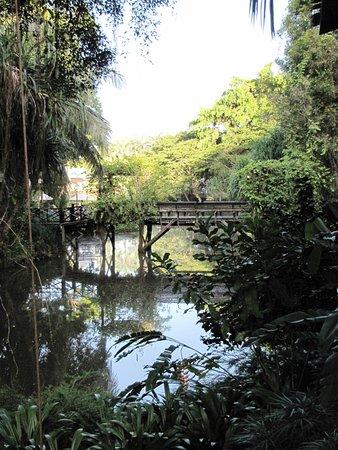 Sepilok, Malaysia: View across the resort lake
