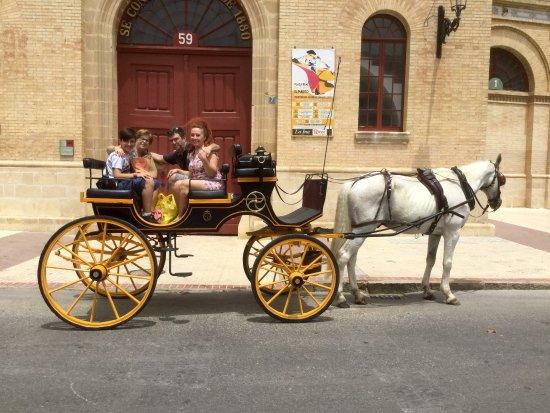 Catedral de Jerez de la Frontera : Paseo a caballo 3