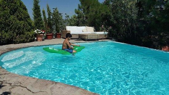 Assos Alarga, Bed and Breakfast: Sedat'ın verdiği bu timsah sayesinde havuzda film bile çektik :)