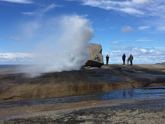 Bicheno Blowhole Australia Top Tips Before You Go With