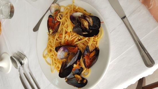 Santa Maria del Cedro, Italy: Oggi spaghetti a vongole  e salmone alla griglia con fagiolini per contorno . Tutto buonissimo