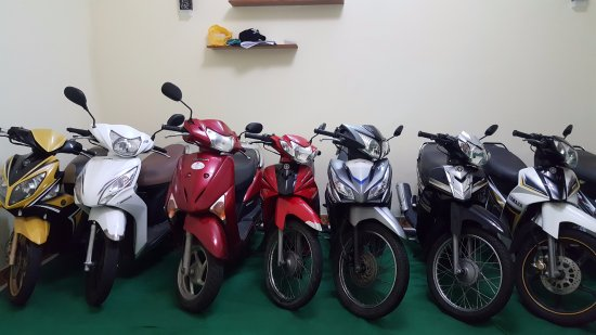 Da Nang-Son Tra Motorcycle Rental