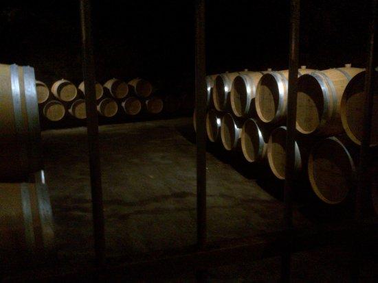 Maine et Loire, Γαλλία: Weinlagerung in den Gewölben