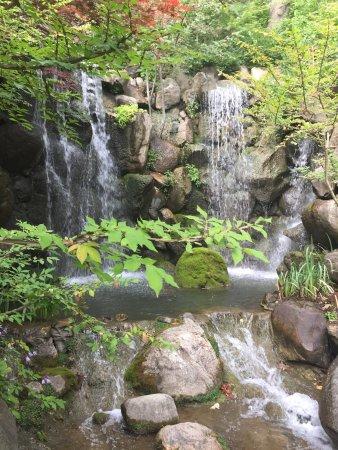 Anderson Japanese Gardens: photo2.jpg