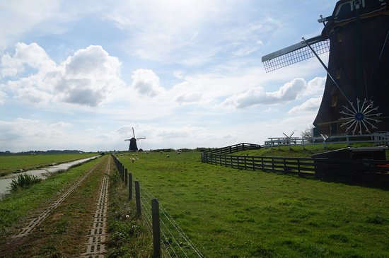 Aarlanderveen, Países Bajos: Walking path along the three wind mills