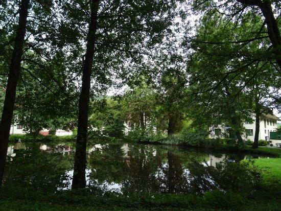 Bad Stuer, Allemagne : Petit étang et, au fond, l'hôtel
