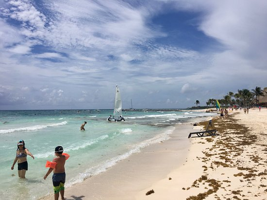 plage avec algues photo de barcelo maya colonial puerto aventuras tripadvisor. Black Bedroom Furniture Sets. Home Design Ideas