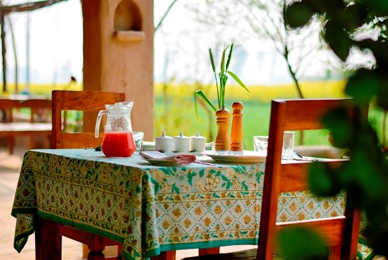 Gurdaspur District, India: Breakfast set amidst mustard fields