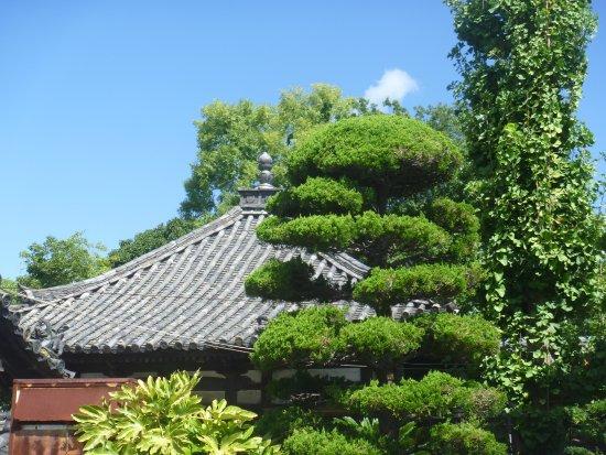 Fudan-ji Temple