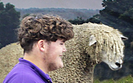 Guiting Power, UK: One of the staff telling us about the sheep, he looks well suited for the job.