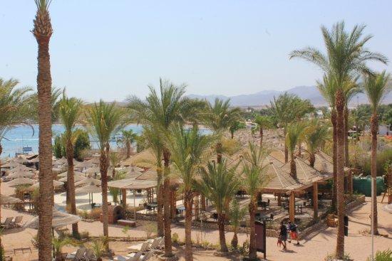 Zdjęcie Oonas Dive Club Hotel