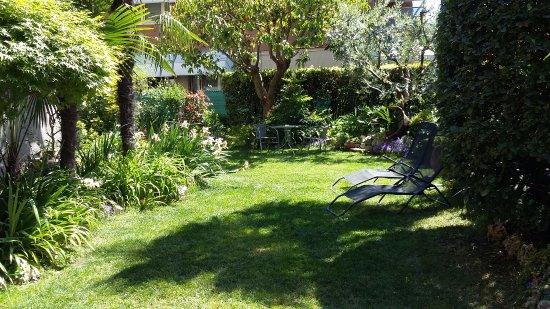 Il Paiolo B&B: giardino