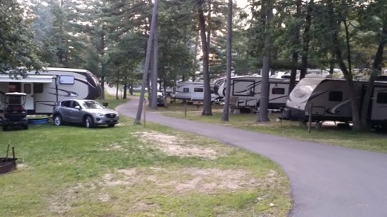 Jellystone Park Warrens: Packed in like never before. Zero privacy.