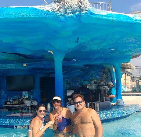 Swim Up Pool Bar For The Adults Can Have Fun Too Picture Of