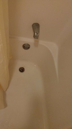 Pocomoke City, MD: Bath tub plug rusting away