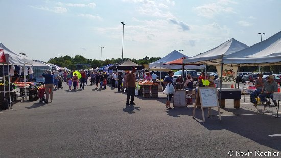 Another view of the stands at the Spotsylvania Farmers Market