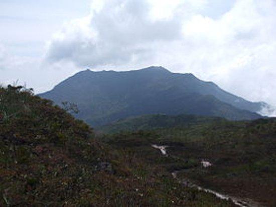 Taman Negara National Park, Malaysia: TahanJoo_large.jpg