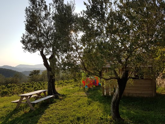 Agriturismo La Burlanda 사진