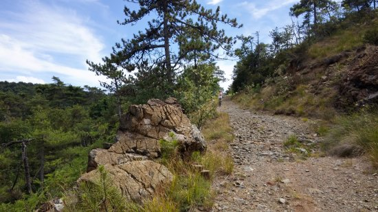 Sassello, إيطاليا: facile sentiero