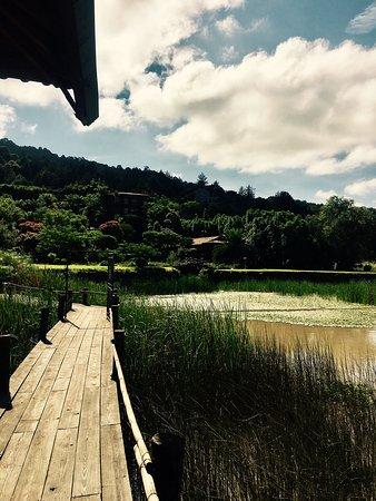 Tzintzuntzan, Mexico: photo1.jpg