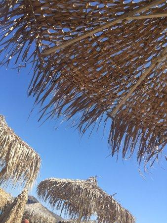 Nea Kydonia, Grecia: photo1.jpg