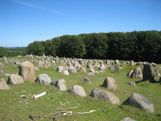 Lindholm Hoeje Museum: Tombe vikinghe