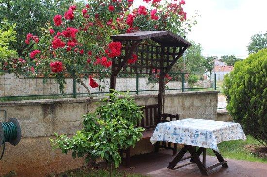 Rovinjsko Selo, Chorwacja: outdoor area, floor studios
