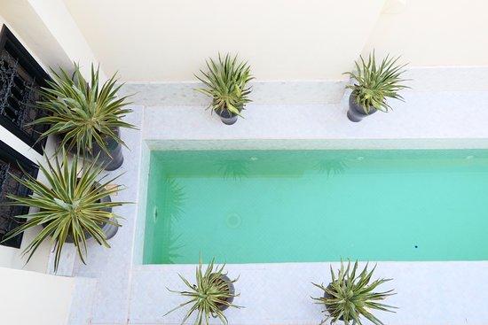 Riad Kheirredine: Piscina de planta superior