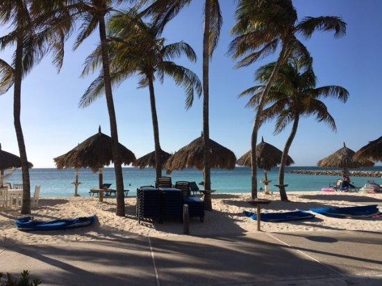 ديفاي أروبا فينيكس بيتش ريزورت: view of the beach from hotel grounds