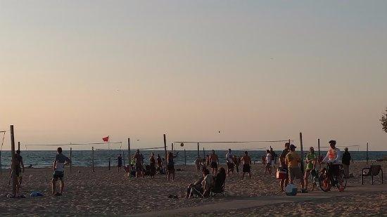 Saugatuck, MI: volleyball everywhere