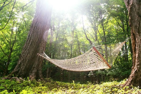 Relaxation is a must when visitng us in our quietly setback place in Pawling, NY!