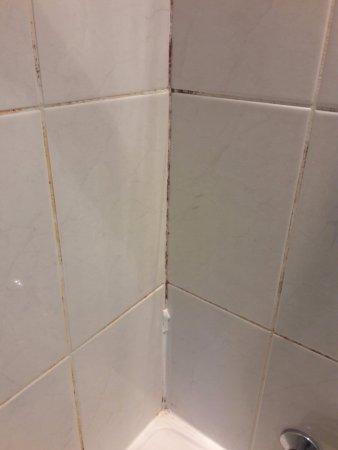 Inter-Hotel Ambacia: Black mold and chipped enamel, plug had no chain, broke when I pulled plug.