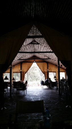 Sekenani Camp: Desde el comedor, vista de la zona de estar.