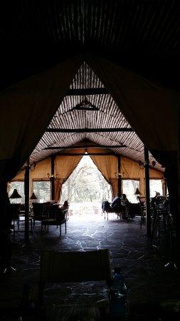 写真Sekenani Camp枚