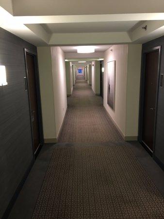 Hyatt Regency Boston Harbor : Hallway