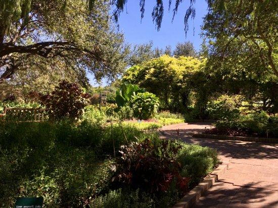 San Antonio Botanical Garden: photo0.jpg