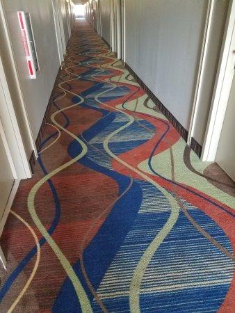 Wickliffe, Οχάιο: Hallways poorly lit