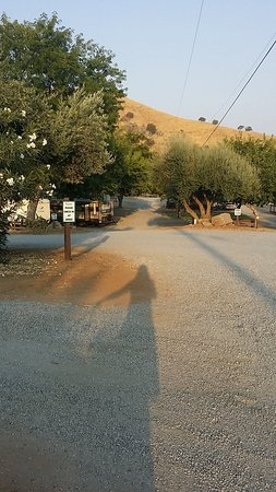 Lemon Cove Village RV Park: 20170906_073551_large.jpg