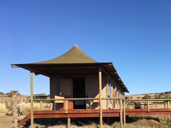 Amakhala Game Reserve, Sydafrika: Tented accommodation- amazing
