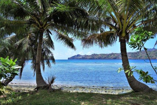 ヌクヒバ島