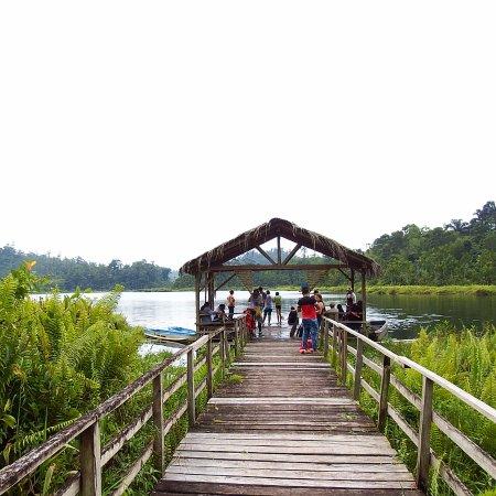Un muelle para llegar a la laguna.