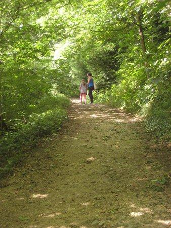 Peterlee, UK: Squirrel Trail - an easy bit!