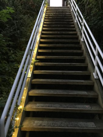 Lummi Island, WA: first se of stairs from road