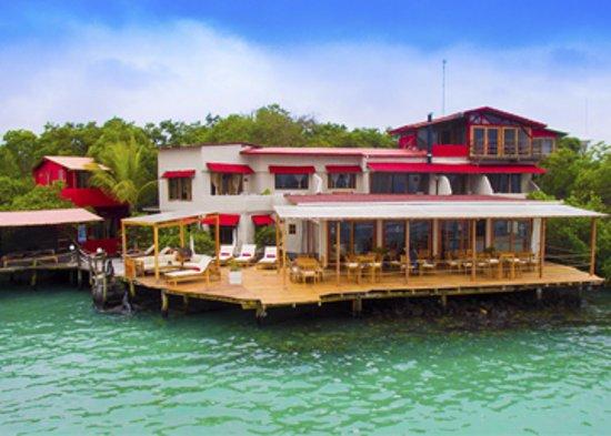 The new Red Mangrove by Haugan Cruises