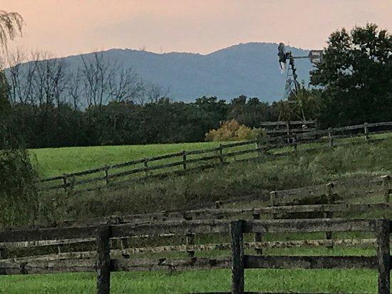 Leesburg, VA: the Catoctins at dusk