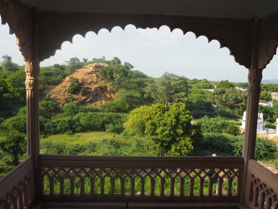 Alipura, Indien: photo8.jpg