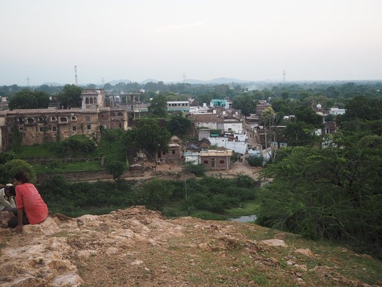 Alipura, Indien: photo9.jpg