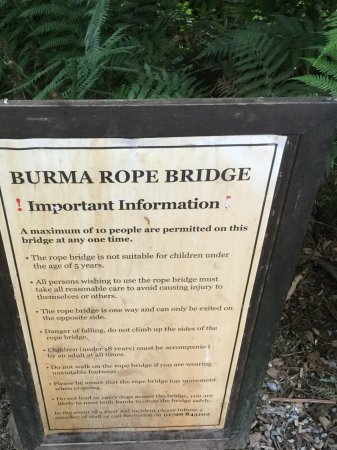 St Austell, UK: Burma Rope Bridge