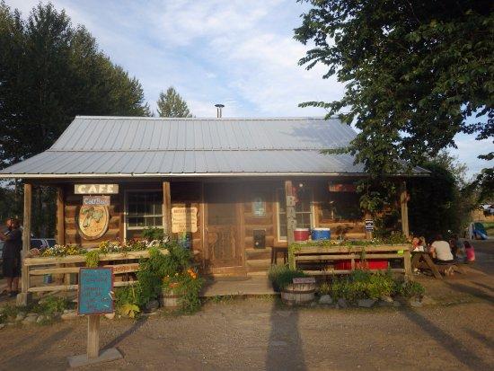 Polebridge, MT: Northern Lights Saloon