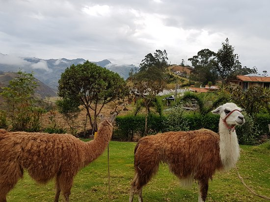 Isinlivi, Ecuador: 20170908_173521_large.jpg